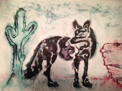 Coyote Dry